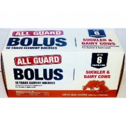 All Guard Bolus 10's