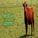 Mineral Supplements